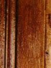 IMG 1768