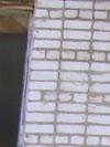S6001204